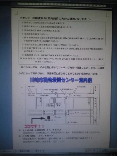 PAP_0140.JPG